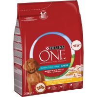 Purina ONE Medium/Maxi > 10 kg Junior Rik på Kylling med ris
