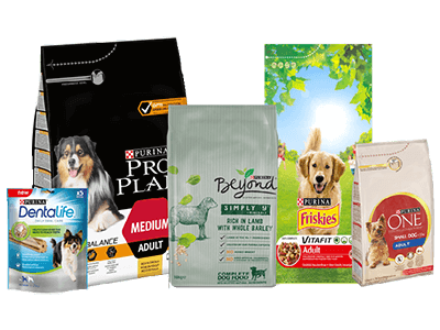 Dog Products